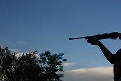 a good .177 air rifle bargain